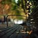 Fall strikes again by Zeb Andrews
