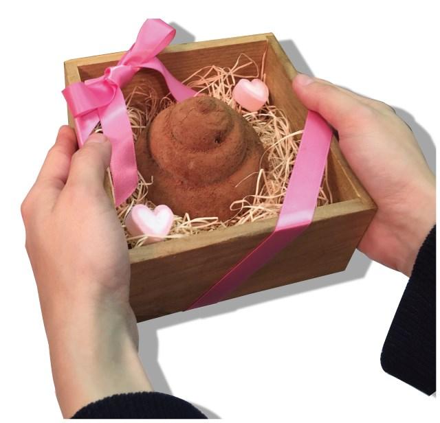 決定惹!今年【情人節巧克力】就用這個做~ 人體器官 & 便便 巧克力模具 人体臓器 & 3Dうんちシリコントレー