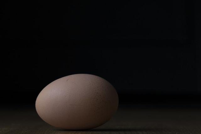 Egg Portrait
