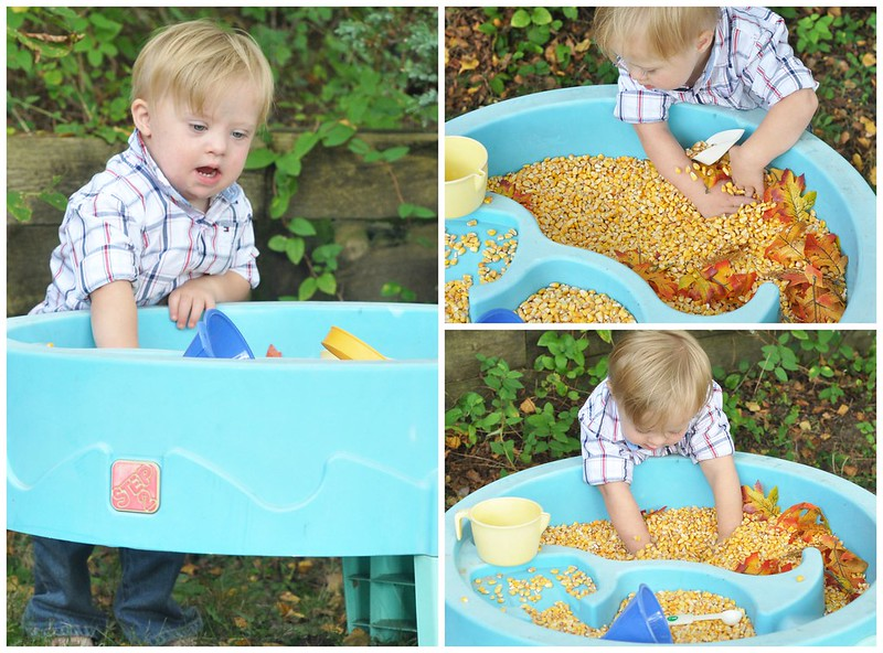 Fall Water Table Play