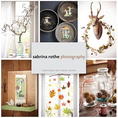 Sabrina Rothe Photography Autumn Decoration-01