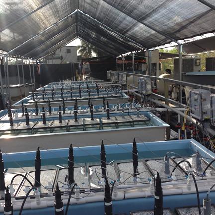 Aquatic Research Integrated Aqua Systems Customized