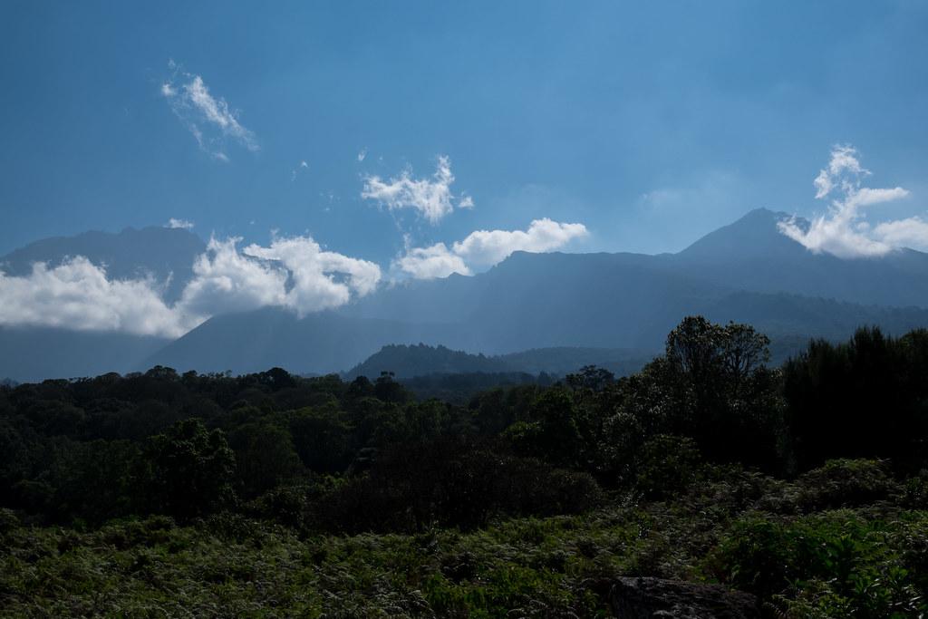Blick zum Mount Meru beim Aufstieg zur Mirakamba Hütte - 1. Tag Mount Meru Tour zur Akklimatisierung. Tansania - Kilimanjaro Kraterschläfer Expedition 2016, Wikinger Reisen