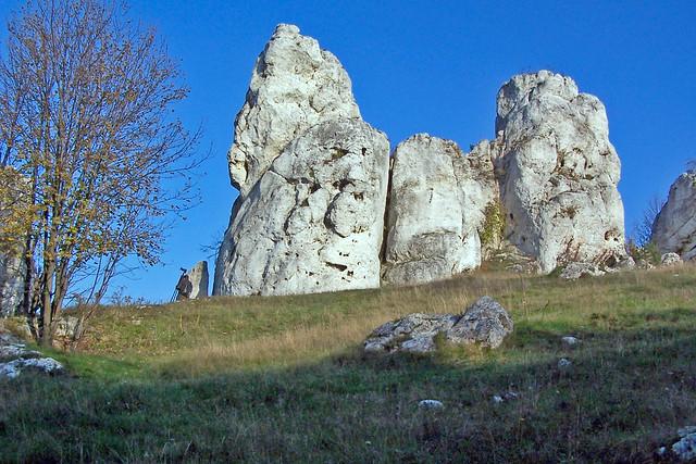 Rock sentry guards Soldering
