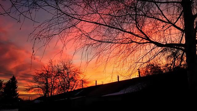 Dawn in the village