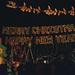 4 Magic Kingdom parade395  Christmas lights 4