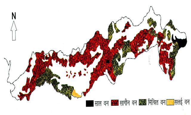 ब. नर्मदा बेसिन में वनों का वितरण