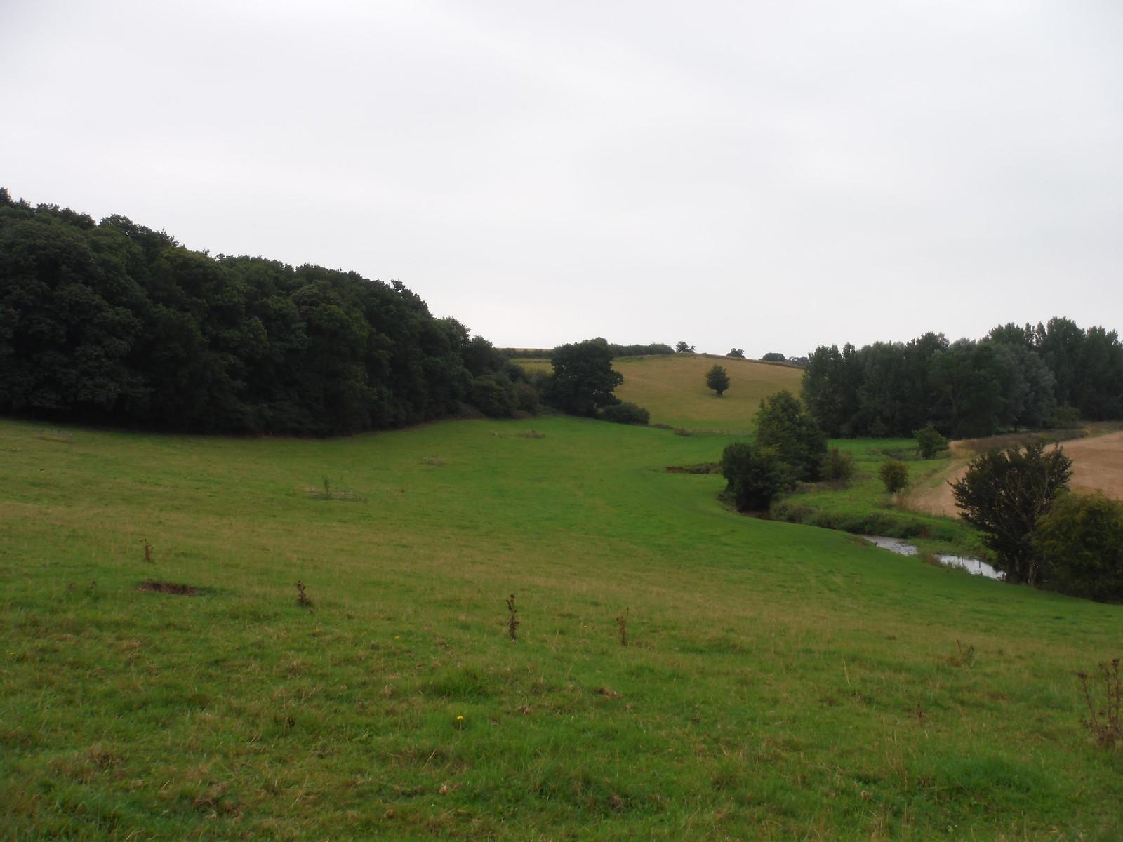 Ash Valley Backview SWC Walk 164 Roydon to Sawbridgeworth via Henry Moore Foundation