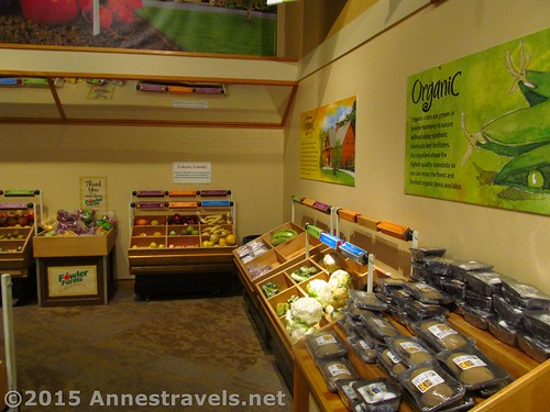 Inside Wegmans within the Strong National Museum of Play, Rochester, New York