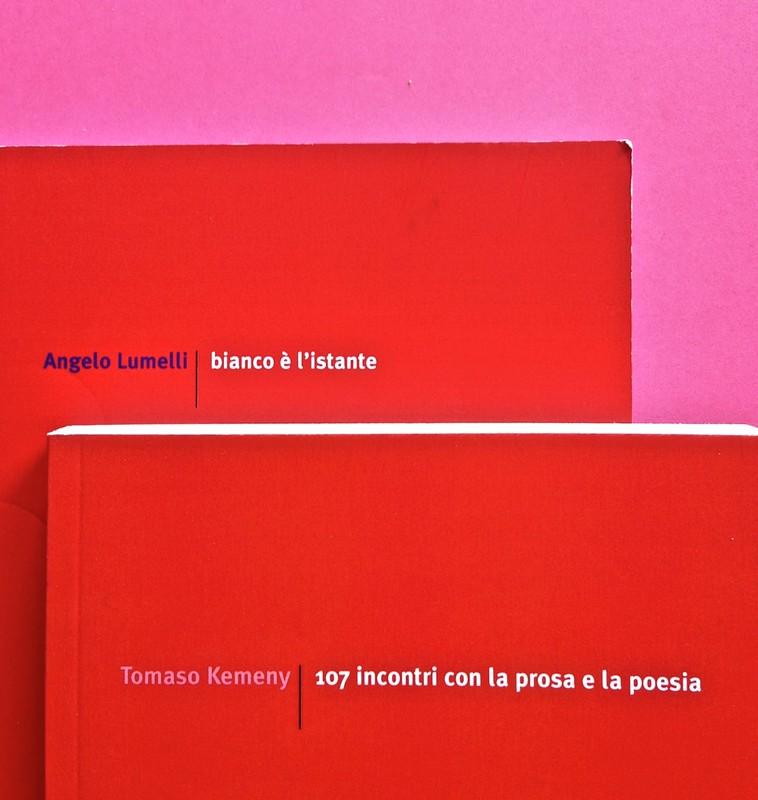Edizioni del Verri / Collana rossa. Progetto grafico di Valerio Anceschi e Giovanni Anceschi. Due copertine (part.), 3