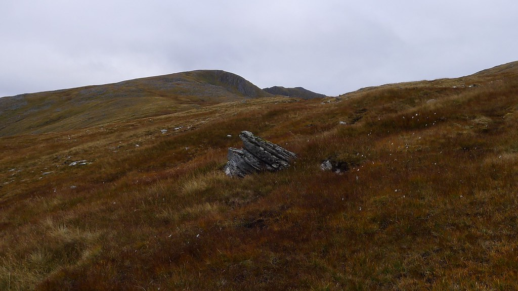 Bog Cotton and Sgurr nan Ceathramhnan