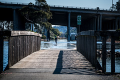 King Tides - Mill Valley November 2015