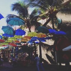 #mauritius #portlouis #caudan #craftmarket #umbrellas