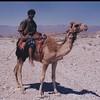 #Dhofari #cameleer #Sadah #dhofar #Oman #SultanateOman #BestOfDhofar  #photooftheday #tagforlikes #like #picoftheday #like4like #instadaily #instalike #instadaily #instacool #photogram #instagood #all_shots #WorldTravelGuide