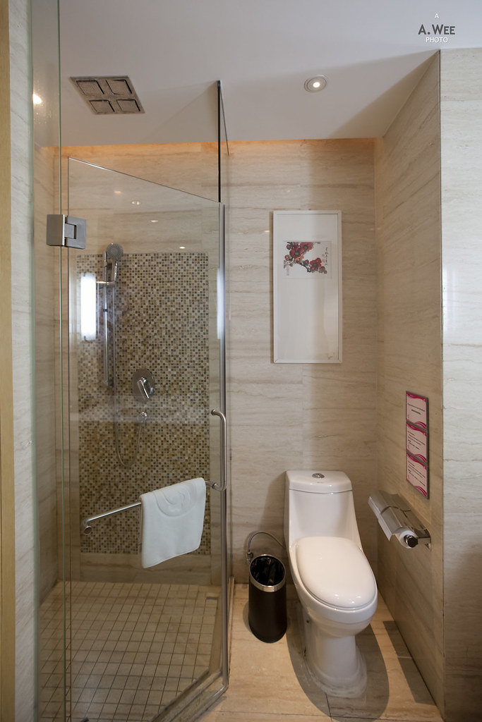 Shower cubicle and toilet