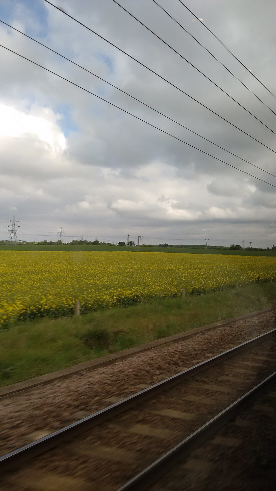View of field from train window