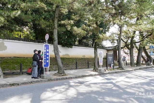 0402D8京都醍醐寺-1160244