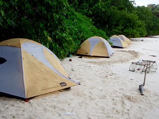 Beach-jungle camp