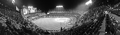 Citi Field Before The Start Of The NLDS Game 3 Black & White Panoramic; Queens, New York