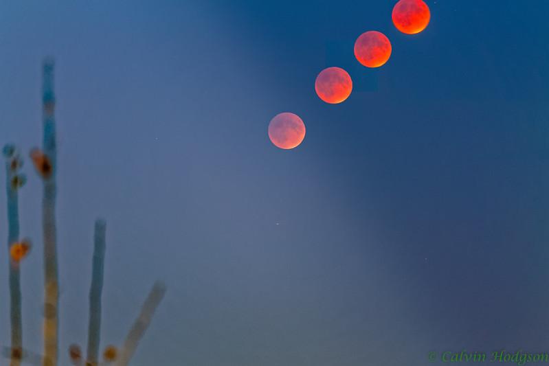 Super Blood Moon Time Lapse