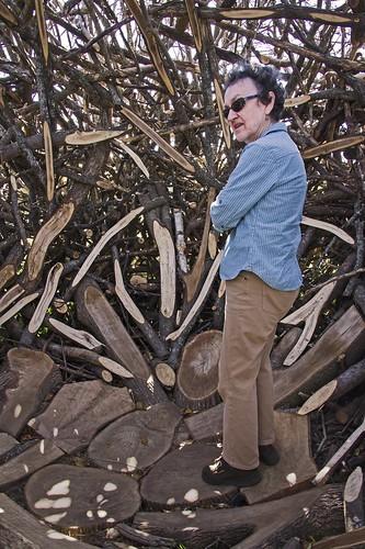 _WCB4275 Leda in Tree Heart