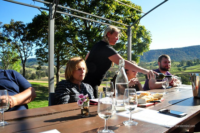 Wine Tasting at Mountain View Estate Hunter Valley