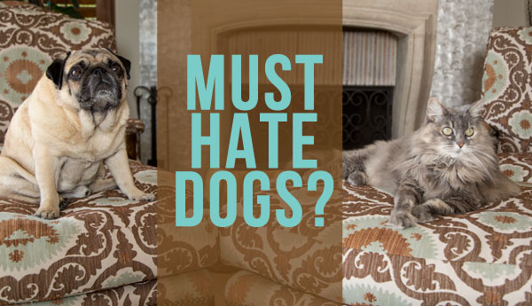 must-hate-dogs