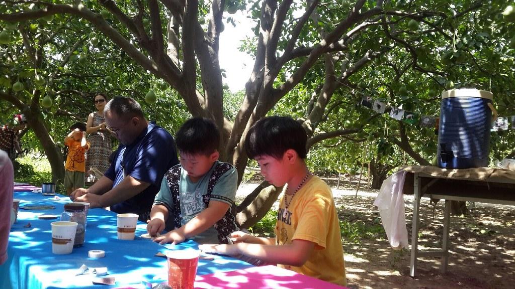 台南市麻豆區5012柚意思柚子園 (55)