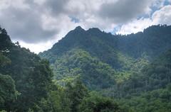 Smoky Mountains Trip, 2015