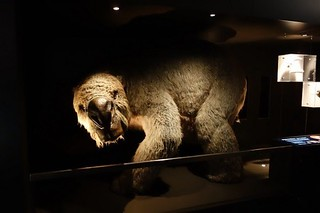 old-dinosaur018