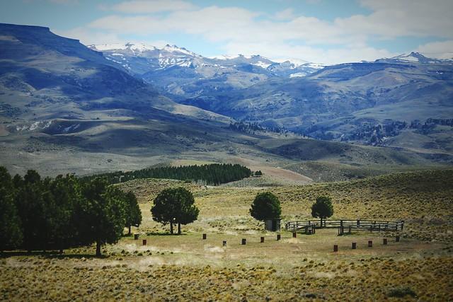 Wild Patagonia!! Patagonia Argentina. Neuquen, Argentina. Unykaphoto Neuquen Argentina Patagonia Argentina