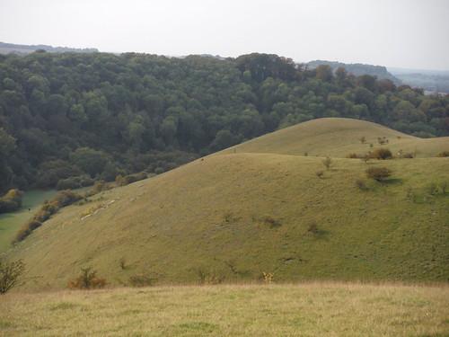Lone Walker on hill, Barton Hills