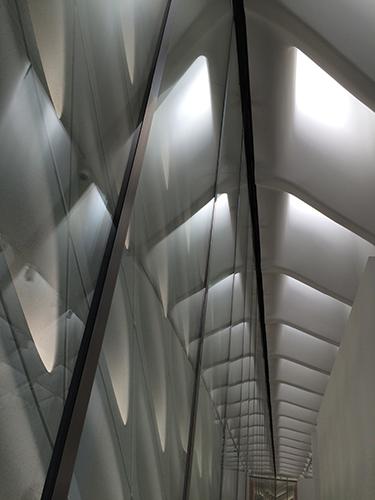 IMG_1355 _ Broad Museum, LA