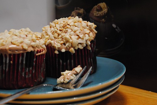 Praline Chocolate Cupcakes Hummingbird