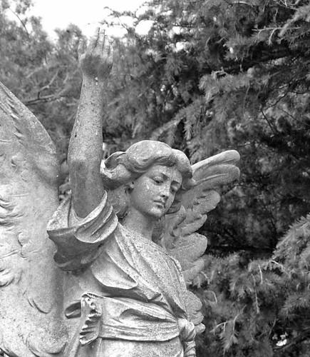 Angelina Ann Gurteen 1922 (5)