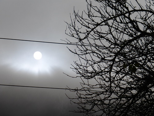2_Sonnnenaufgang im Morgennebel