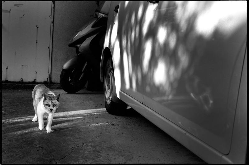 In a garage