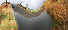 """Swamp Stop Truckers""–dedicated to fellow PANO-artist, Bill Smith, who continues to inspire us all!"
