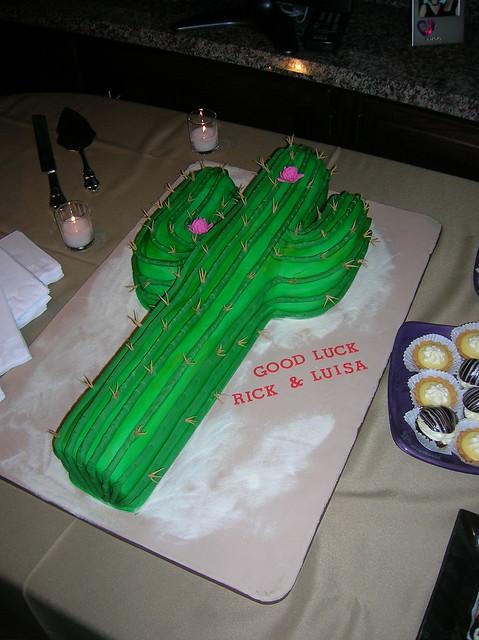 Cactus Cake Flickr Photo Sharing
