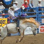 Bare back riding, Greeley Rodeo