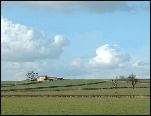 The Farm on Hill