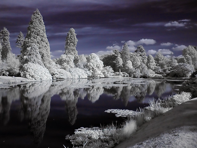 Photo:Lake Infrared By:Mark (marbo)
