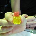gummy bear head transplant