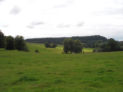 Barkers Hill from Wardour Park