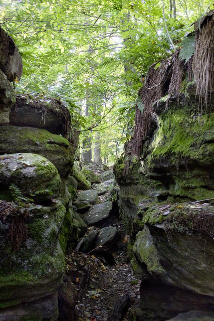IMG_6732 Rocky Path