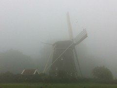 fog and windmills