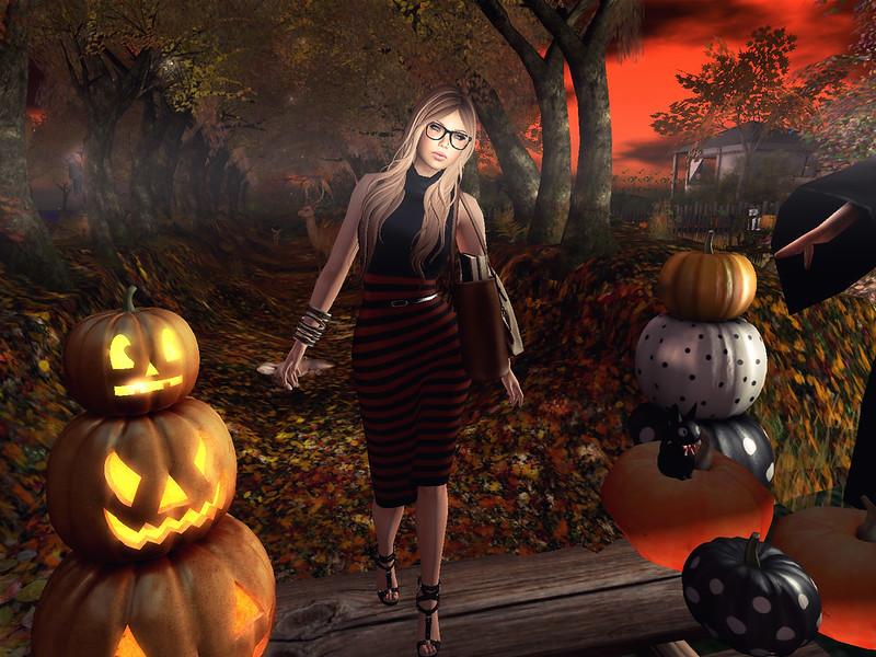 Pumpkin Hunt season