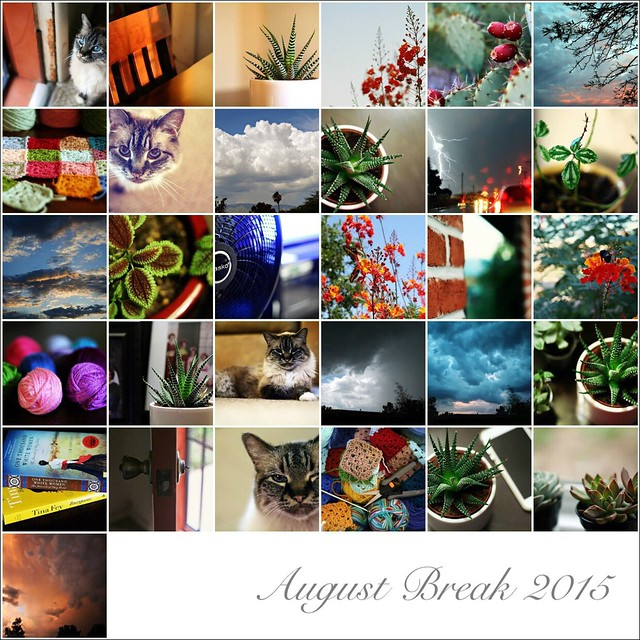 My August Break 2015