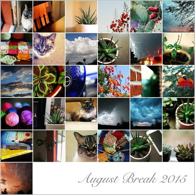 My August Break 2015