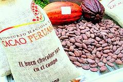 Perú es el segundo productor de Cacao